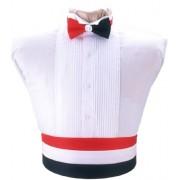Red, White, and Blue Cummerbund and Tie Set