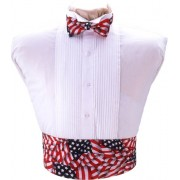 Stars and Stripes Cummerbund and Tie Set