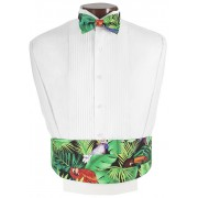 Tropical Birds Cummerbund and Bow Tie Set