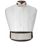 Rhinestone Glitz Cummerbund and Bow Tie Set