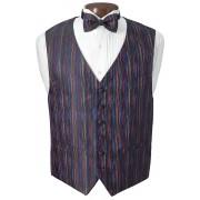 Multicolor Vest and Bow Tie Set