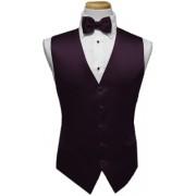 Custom Color Premier Vest and Tie Set