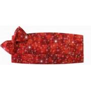 Holiday Sparkle Cummerbund and Tie Set