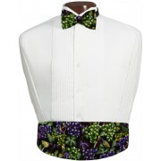 Napa Valley Cummerbund and Bow Tie Set