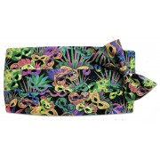 Mardi Gras Carnival Cummerbund and Tie Set