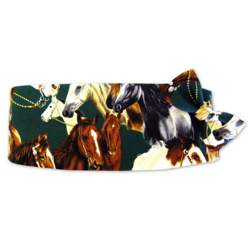 Thoroughbred Cummerbund and Tie Set