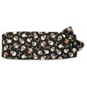 Skull and Funny Bones Cummerbund and Tie Set