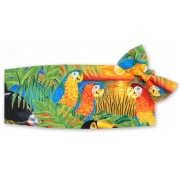 Parrots in Paradise Cummerbund and Bow Tie Set