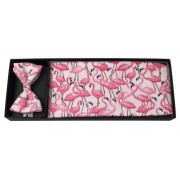 Flamingo Fun Cummerbund and Bow Tie Set