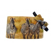 Zebras on Safari Cummerbund and Tie Set