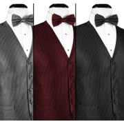 Silk Weave Vest and Tie Set